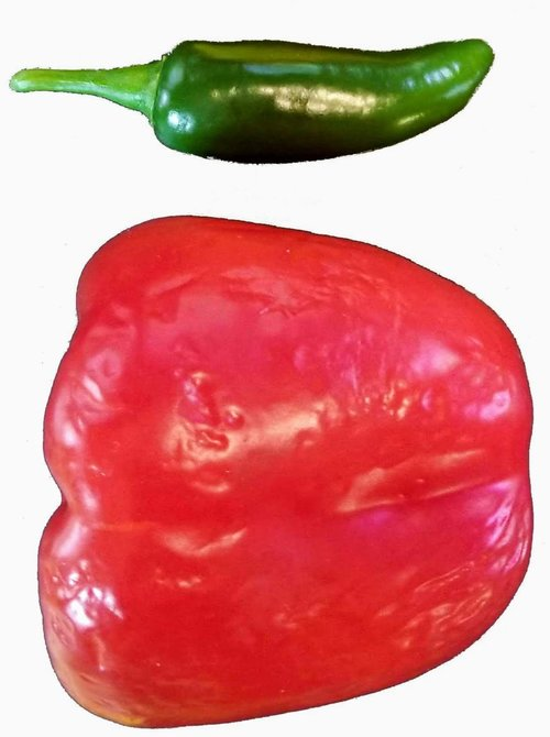 Chile Pepper Cultivars Chilepeppers Com